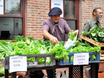 Con-éxito-se-desarrolló-la-Feria-de-Agricultura-Familiar-5
