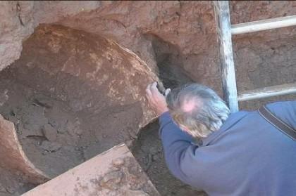 Se confirmó que los fósiles encontrados en Alberti eran de un gliptodonte