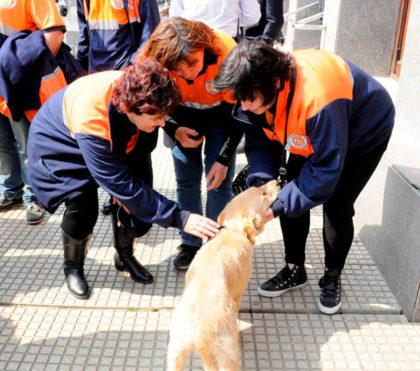 defensa-civil-cuenta-con-un-perro-de-busqueda-y-rescate-de-personas-vivas-3