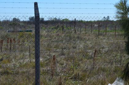 CAZMA recuerda la prohibición de dejar animales sueltos en la vía pública