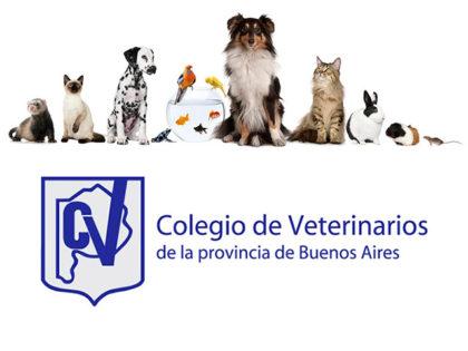 Colegio de veterinarios: Denuncia obligatoria de enfermedades zoonóticas