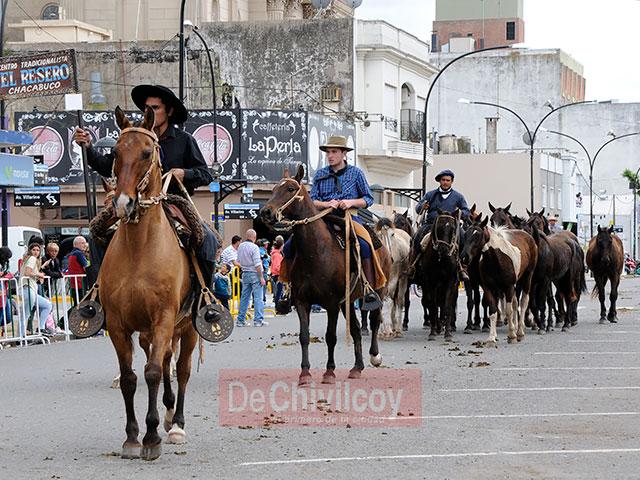 desfile-criollo_15