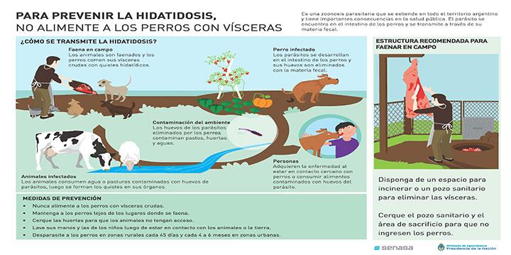 campana-prevencion-hidatidosis