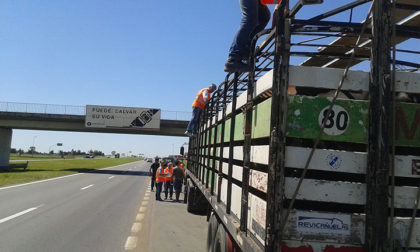 Durante 2016 el Senasa controló la carga de más de 3.000 transportes en rutas del norte bonaerense