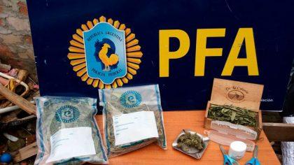 La Policía Federal Argentina decomisó un vivero de marihuana
