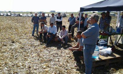 Se realizó la charla técnica de maíz y bioestimulantes de Alianza Semillas