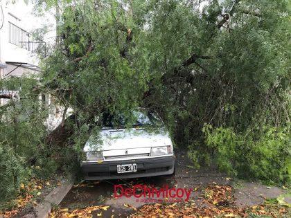 Primeras imágenes de los daños que dejó el temporal de ayer